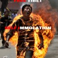 "Dharmasala, India, March 30, 2012: The ""FREE TIBET"" hero Jamphel Yeshi whose pictures were seen protesting everywhere from walls of social networking sites to news, last rights or funereal was […]"
