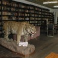 Located in the central city of Kathmandu valley, the Kaiser Library is one of the oldest and resourced libraries of Nepal. Currently inside the Kaiser Mahal it holds a historical […]